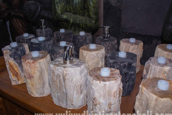 soap dispenser from petrified wood