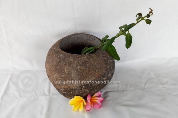 stone plants pot